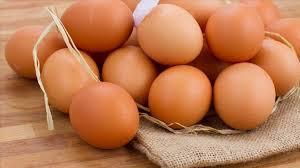 Tavuk yumurtası üretimi geçen yıl azaldı