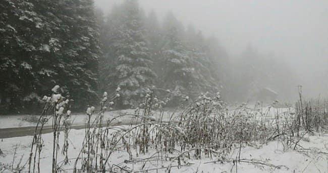Bolu'nun yüksek kesimlerinde kar yağışı