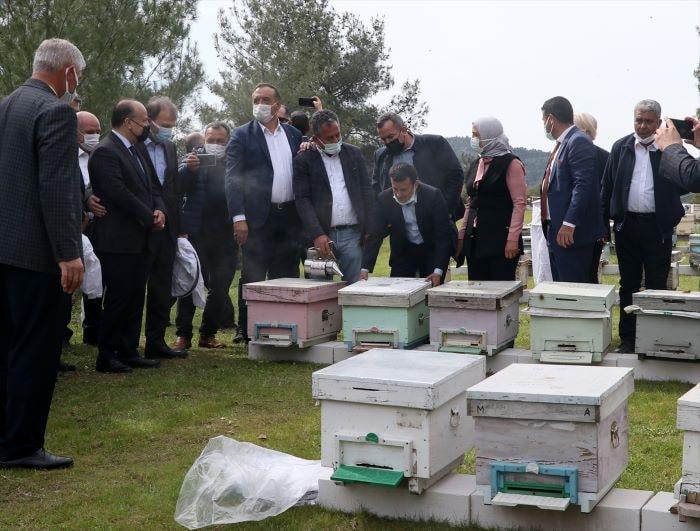 İzmir'de Roman kadınlara arı kovanı desteği