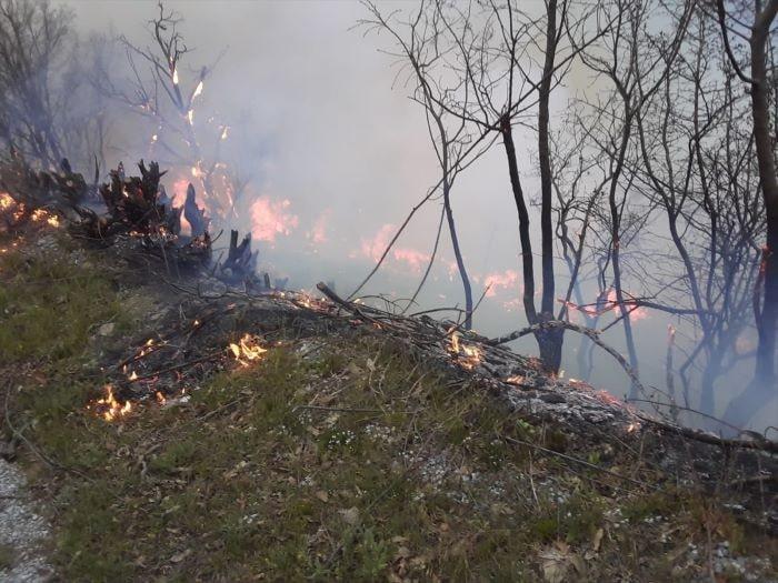 İzmir'de dağlık alanda yangın çıktı