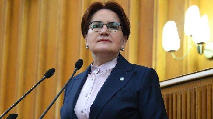 Akşener İYİ Parti'nin parlamenter sistem ilkelerini açıkladı