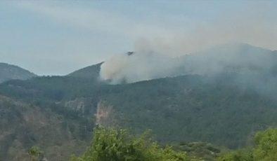 Muğla'nın Ortaca ilçesinde orman yangını