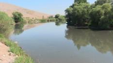 Ceyhan Nehri'ndeki balık ölümleri artıyor