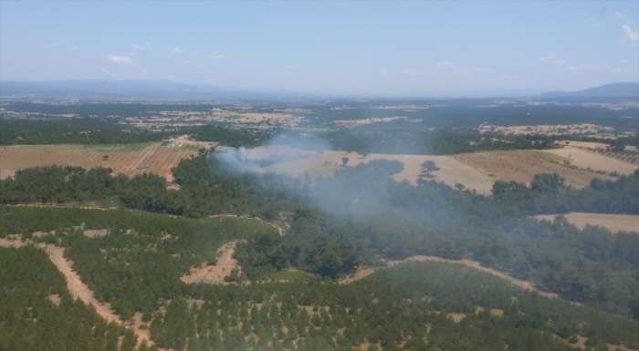 Çanakkale'nin Ezine ilçesindeki orman yangını