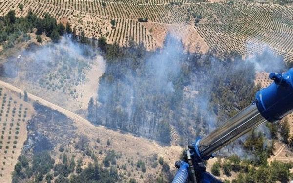 Denizli'de orman yangını çıktı