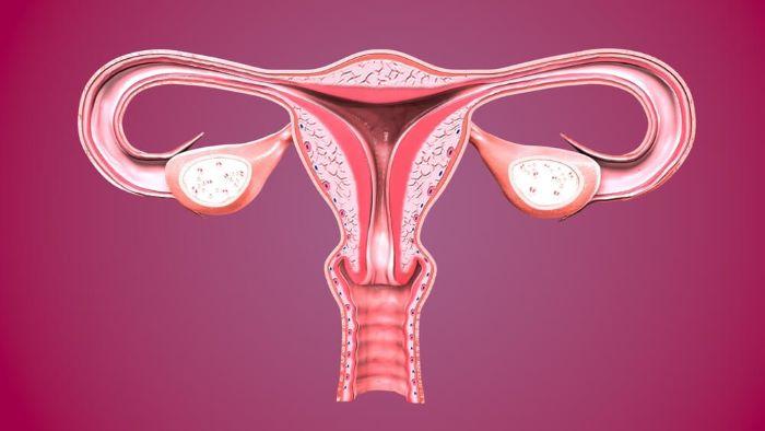Rahim içi kalınlaşmalar kansere dönüşebiliyor