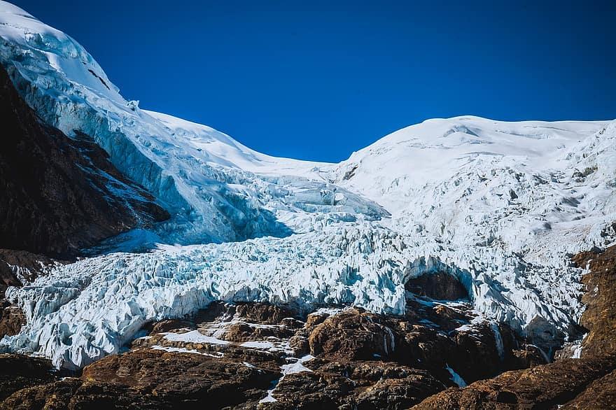 Tibet'teki 15 bin yıllık buzulda 28 yeni virüs