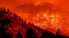 """California'daki """"Caldor yangını"""" 756 kilometrekare alanı tahrip etti"""
