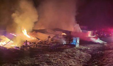 Çorum'da çıkan yangında 145 ton hububat yandı