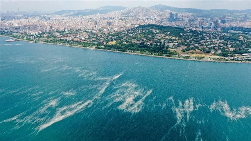 """Marmara Denizi'nde büyük tehlike """"oksijen azlığı"""""""
