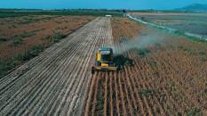 Tarım destek ödemeleri bugün yapılıyor