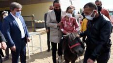 Aksaray'da engelli çalışanlar ile çocuklara 'atla' terapi